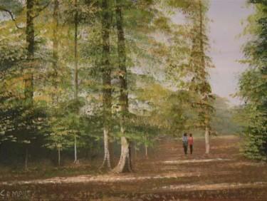 ballinahinch forest stroll