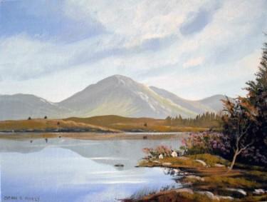 connemara lakeside sheep