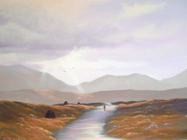 bog road leenane co galway
