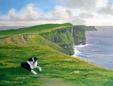dog by the cliffs of moher