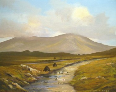 inagh valley sheep