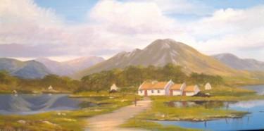 connemara cottage 2013