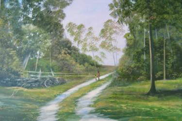 ballinahinch forest walk