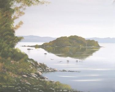 lake-isle-of-inishfree.jpg