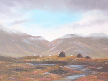 connemara bogland