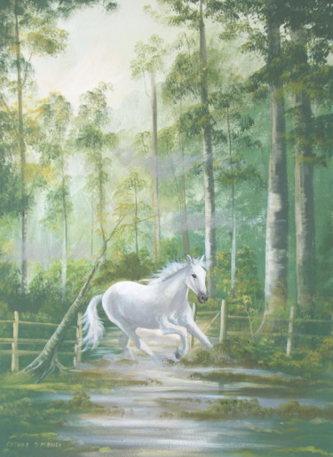 forest gallop