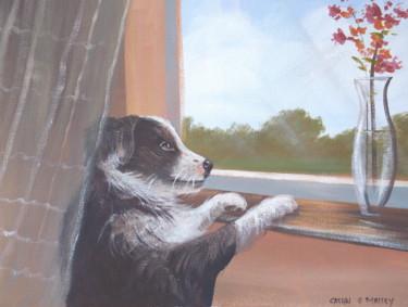 puppy by a window