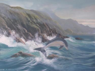 connemara dolphin