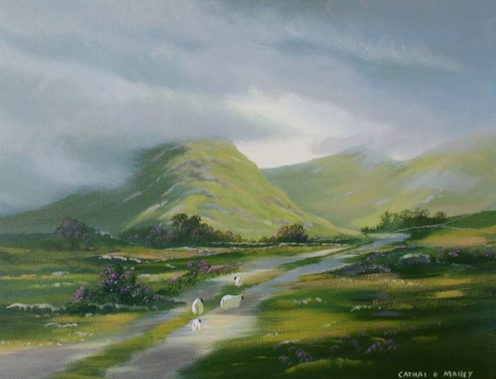 Cathal O Malley - connemara flowers