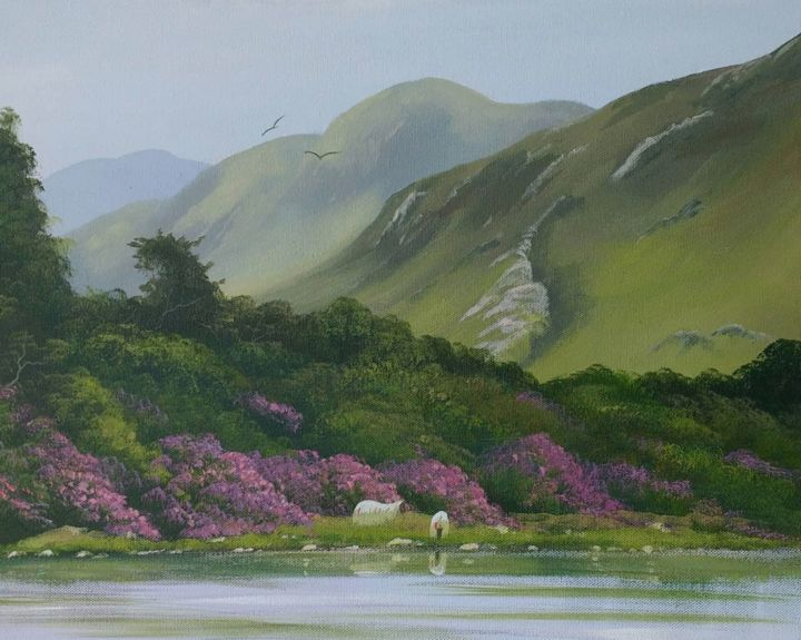 Cathal O Malley - kylemore-sheep.summer