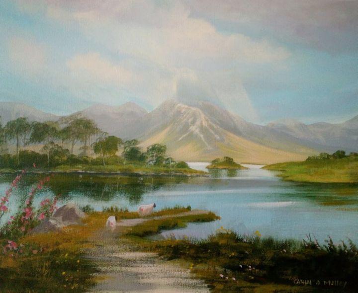 Cathal O Malley - pine island 2019